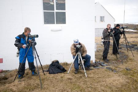 birdwatchers-slettnes-may09-terjekolaas.jpg